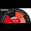 Pagaie Select Warrior