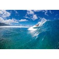 Planche de surf Oxbow 6.7 Shortboard Bic 2020