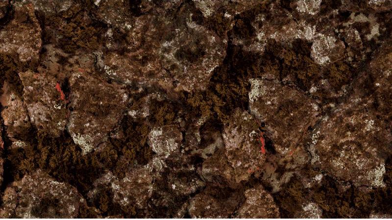 chausson beuchat camouflage trigocamo wide